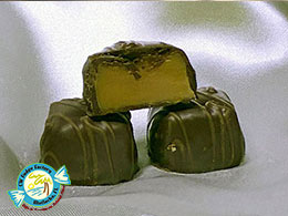 CW FUDGE FACTORY MATLACHA FLORIDA